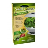Salad Greens Seed Kit
