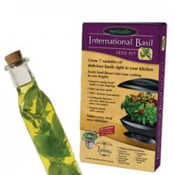 International Basil Seed Kit