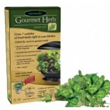 Gourmet Herbs Seed Kit